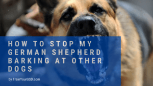 how to stop my german shepherd barking at other dogs