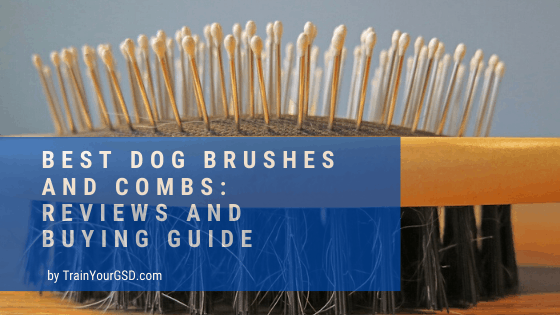 best dog brushes and combs