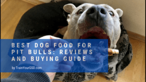 best dog food for pit bulls