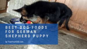 best dog foods for german shepherd puppy