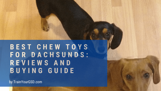 best chew toys for dachsunds