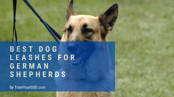 best dog leashes for german shepherds
