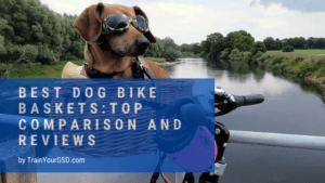 best dog bike baskets: reviews and buying guide