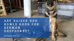 are raised dog bowls good for german shepherds