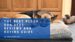 best plush dog beds