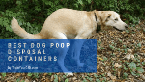 best dog poop disposal containers