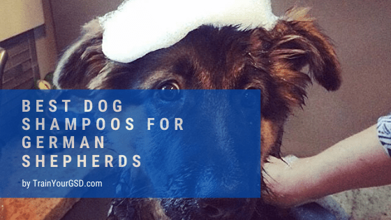 best dog shampoos for german shepherds