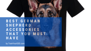 best german shepherd accessories