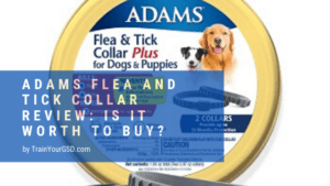 adams flea and tick collar review