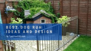 best dog run ideas and design
