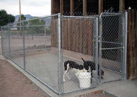 chain link fencing dog run