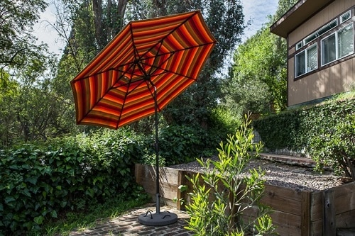 dog run with patio umbrella