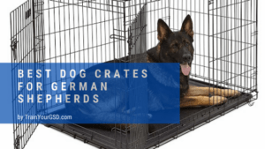 best dog crates for german shepherds
