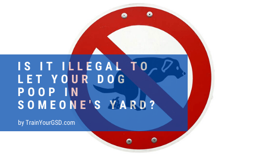 is it illegal to let your dog poop in someone's yard?