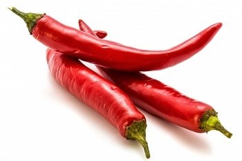 Dogs hate the smell of chili pepper. Chili pepper can make dog's nose itchy and make them sneeze.