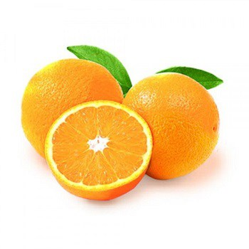 Dogs hate the smell of Citrus.