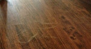 clean up dog hair on wood floors