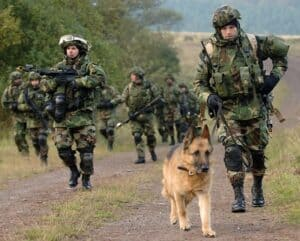 German shepherd led a foot patrol.