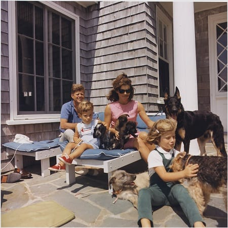 The dogs of the Kennedy family.