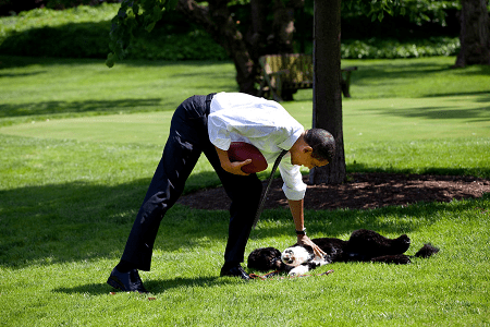 Obama playing with his dogs—Bo and Sunny.