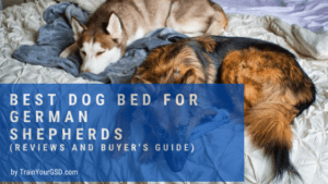 best dog bed for german shepherds