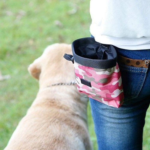 Dog treat pouch example.