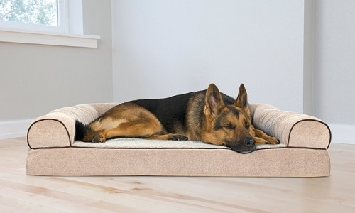 German shepherd laying on bed.