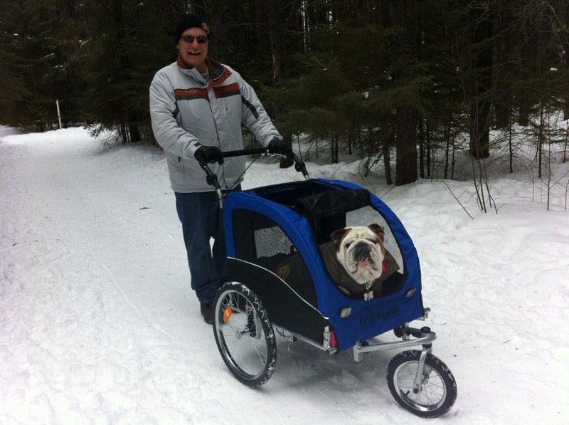 Using dog stroller in winter.