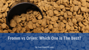 Fromm vs Orijen: which one is the best