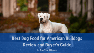 best dog food for American Bulldogs review