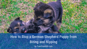 how to stop a german shepherd puppy from biting and nipping