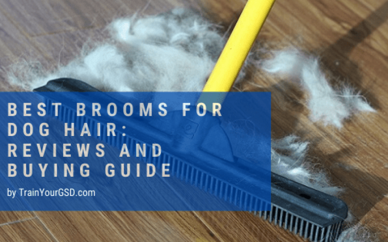 best brooms for dog hair