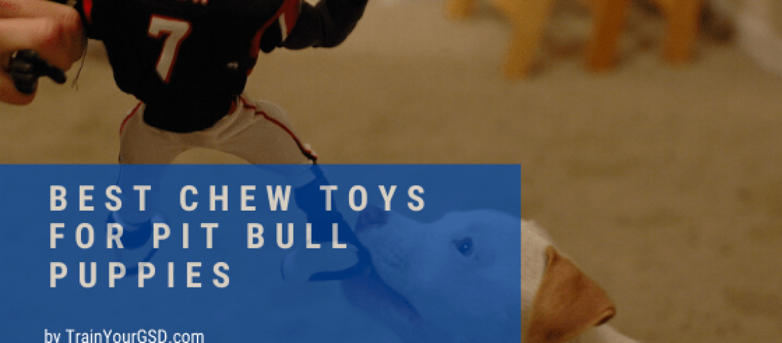 best chew toys for pit bull puppies