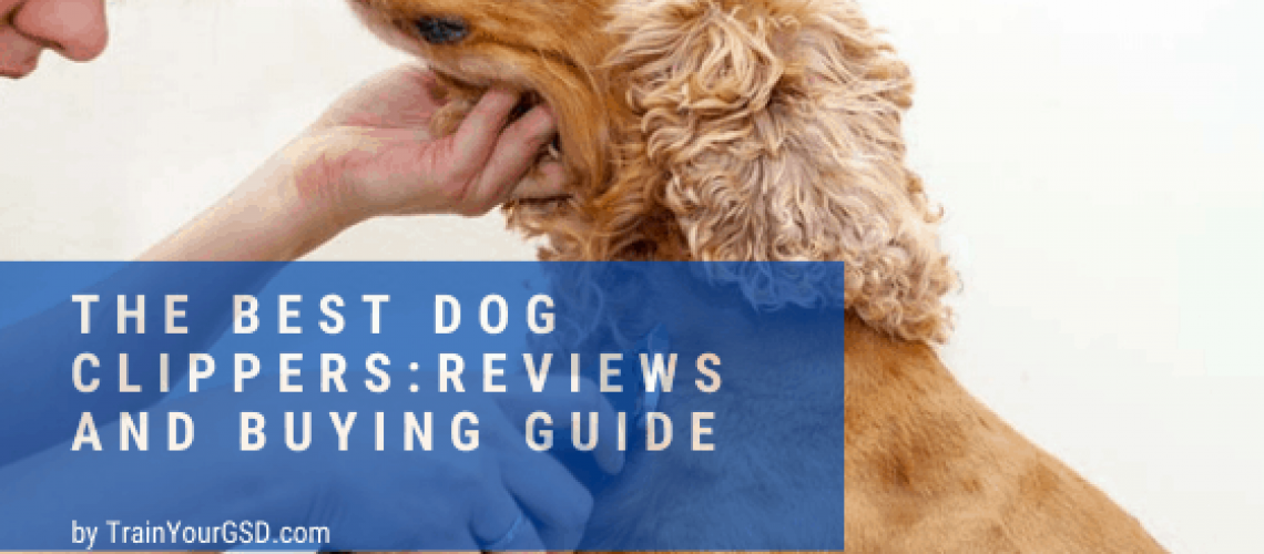 the best dog clippers: reviews and buying guide