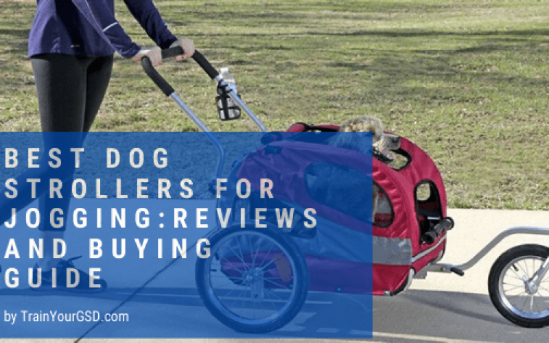 best dog strollers for jogging:reviews and buying guide