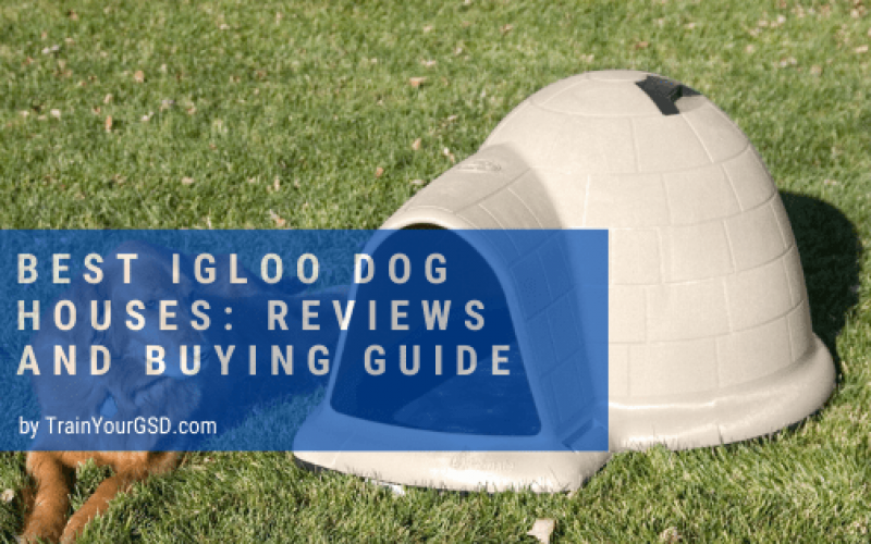 best igloo dog houses: reviews and buying guide
