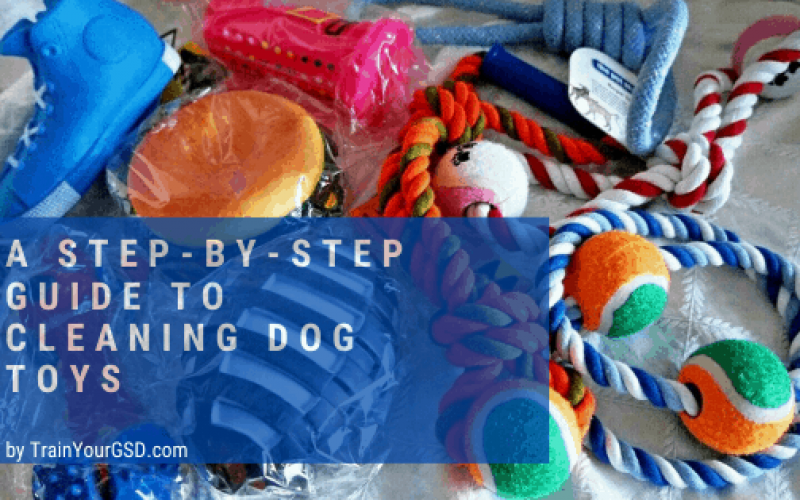 a step-by-step guide to cleaning dog toys